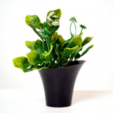 Artificial Plant Good Luck Air Purifying