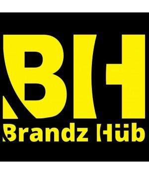 https://www.buyon.pk/image/cache/data/members/brandzhub/site-images/bh-logo-300x350.jpg