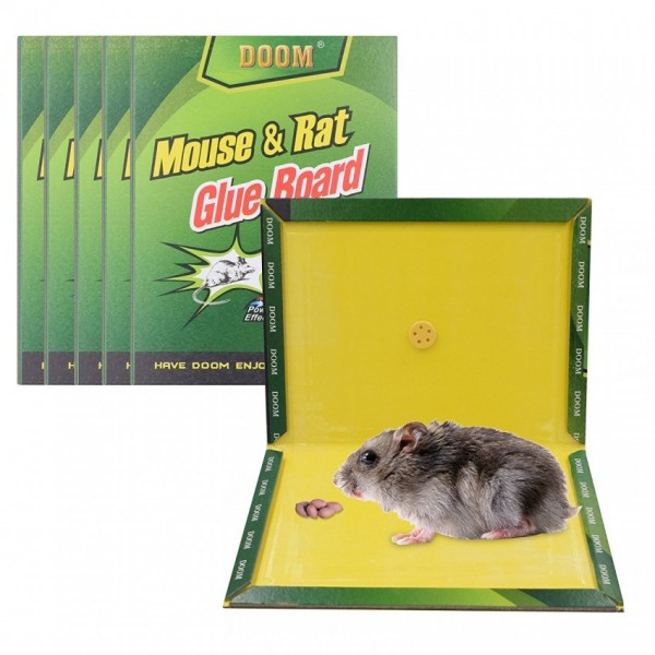 Pack of 10 - Reusable Expert Catch Mouse and Rat Glue Catch Trap