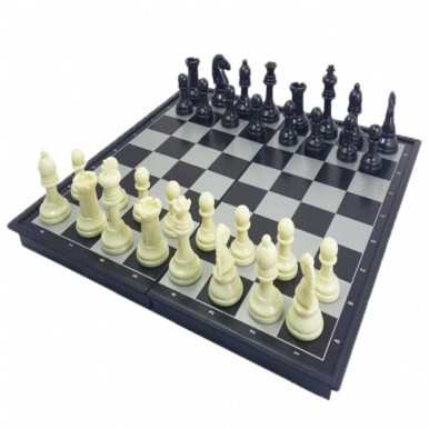 Chess - Magnetic Board (Portable)