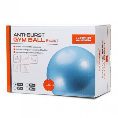 ANTI-BURST GYM BALL 55CM