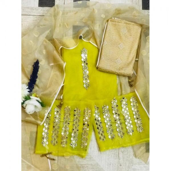 Mirror work Organza dress for Ladies