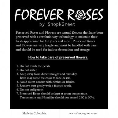 PRESERVED ROSE - SHORT STEM