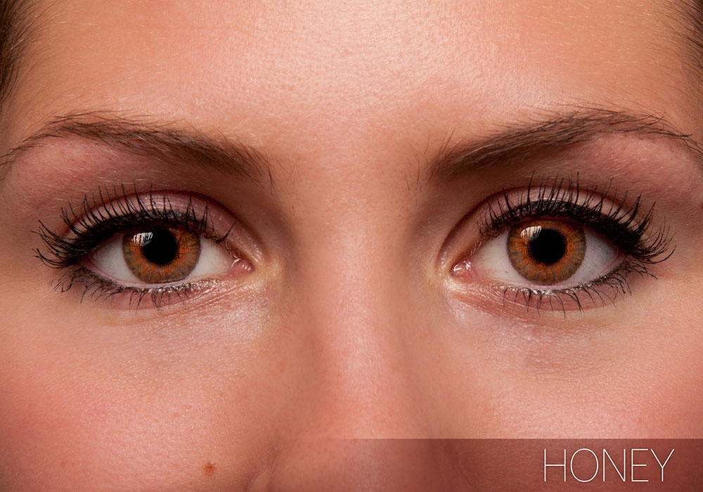 FreshLook Colorblends Honey Contact Lens